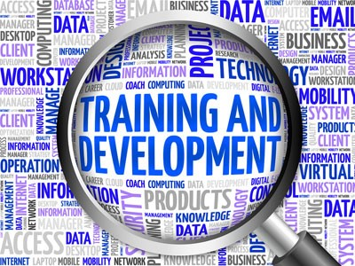 discover-training-and-development
