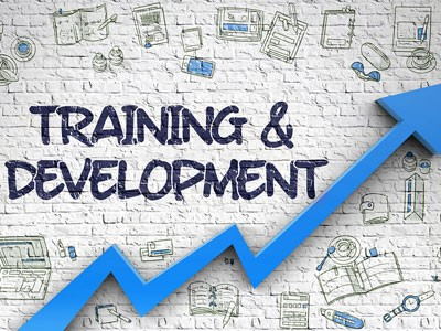 training-and-development-1